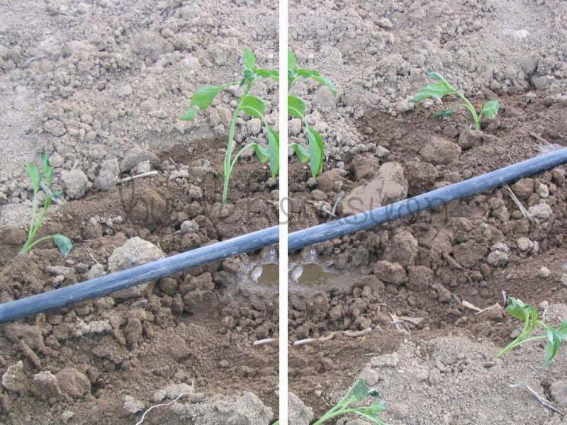 Tarımsal Sulama Sistemlerinde kullanılan Damla sulama boruları